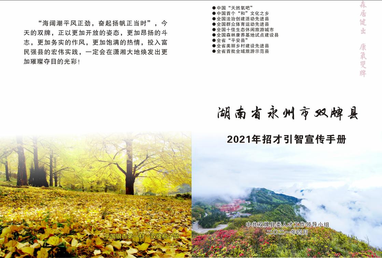 中共双牌县委2021年招才引智方案